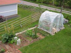 Instant DIY greenhouse