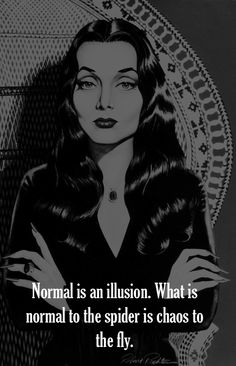 Normal is an illusion. What is normal to the spider is chaos to the fly. ~ Morticia Addams, The Addams Family Quotes To Live By, Me Quotes, Motivational Quotes, Inspirational Quotes, Silly Quotes, Quotes Pics, Sweet Quotes, Gomez And Morticia, Morticia Addams