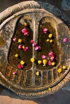 Buddhha's footprints carved in stone and strewn with flowers. Bodh Gaya Monastery, Bihar State, India.