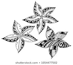 Polynesian Tattoo Images, Stock Photos & Vectors - Plumeria flower as tribal tattoo in Maori and Samoan ethnic styles - Maori Tattoos, Maori Tattoo Frau, Hawaiianisches Tattoo, Polynesian Tattoos Women, Tribal Tattoos For Women, Polynesian Tattoo Designs, Best Tattoos For Women, Marquesan Tattoos, Irezumi Tattoos