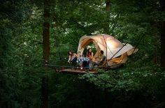 Le Domaine des Grottes de Han propose des nuitées inoubliables aux sommets des arbres!