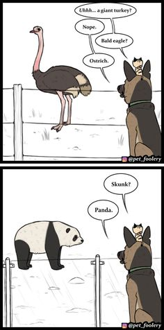8 New 'Pixie And Brutus' Comics To Brighten Up Your Day - German Shepherd Dogs Funny Dog Jokes, Funny Animal Memes, Animal Quotes, Funny Animal Pictures, Funny Memes, Hilarious Animals, 9gag Funny, Funny Captions, Animal Humor