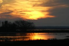 Sunset over the Delta