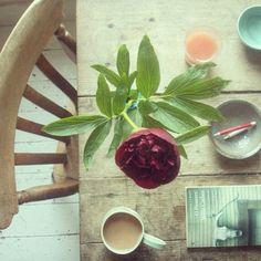 Il cesto dei tesori: Art of living - Philippa Stanton still life shots - #5ftinf