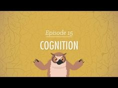 ▶ Cognition: How Your Mind Can Amaze and Betray You - Crash Course Psychology #15 - YouTube