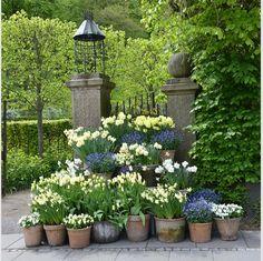 A stack of planters Gnome Garden, Garden Pots, Spring Flowers, White Flowers, Flowers Garden, Pot Jardin, Garden Cottage, Garden Pictures, White Gardens