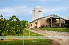 The Crown Winery in Humboldt, TN