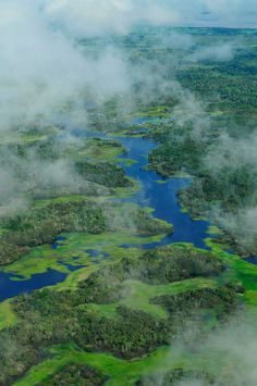 Famous River around the Earth (11)  The Amazon