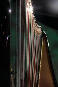 Harpan. Musiker Lars Paulin. Fotograf Linda Sinkkonen.