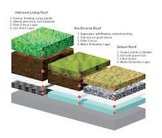 Living Roof Construction Is A Sedum Roof Covering Best For A Diy Green Roof? Sedum Roof, Sedum Plant, Roofing Options, Roofing Materials, Living Roofs, Living Walls, Roof Colors, Roof Covering, Green Architecture