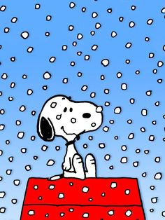Image detail for -Charlie Brown Christmas Wallpapers A Snoopy Christmas Cartoon . Snoopy Love, Snoopy Et Woodstock, Charlie Brown Peanuts, Charlie Brown And Snoopy, Peanuts Snoopy, Peanuts Cartoon, Schulz Peanuts, Peanuts Comics, Snoopy Comics
