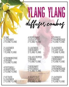 best essential oil for stress anxiety doterra essential oil blend for stress and anxiety Essential Oils Guide, Essential Oil Uses, Doterra Essential Oils, Helichrysum Essential Oil, Essential Oil Combinations, Essential Oil Perfume, Essential Oil Diffuser Blends, Essential Oil Blends, Natural Beauty Products