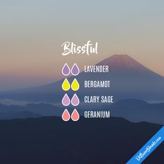 Blissful - Essential Oil Diffuser Blend