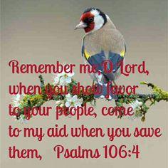 Lord remember me. Psalm 106:4. Bible verse.  Beautiful words and beautiful bird.