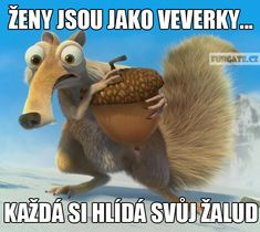 Ženy jsou jako veverky,... Funny Images, Best Funny Pictures, Funny Jokes, Hilarious, Ghost Rider Marvel, Best Memes Ever, Meme Lord, Blow Your Mind, Good Humor