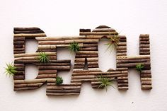 Living Driftwood Beach Sign with Air Plants by AnotherWorldPlants