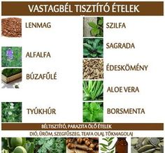 Vastagbél tisztító ételek | Socialhealth Alternative Therapies, Herb Garden, Aloe Vera, Health And Beauty, Detox, Healthy Lifestyle, Health Care, The Cure, Clean Eating