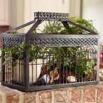 Heidi Scott...cage
