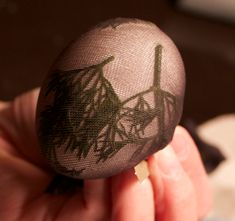 How to dye eggs with herb relief patterns