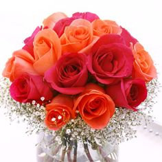 Hot pink and orange roses