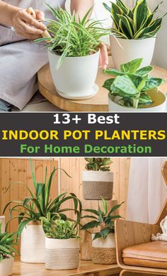 Are you looking for the best indoor pot planters for your home decoration?  Look no further:  Here's a complete list of top planters that will make your plants to stand out as they should.  What's more?  All our recommendations will fit any budget. Starting from $4 and all under $100, you can accessorize interiors without any hassle or breaking the bank.  Let's begin.   #Planters #GardenPlanters #PlantPots #HomeDecor #HomeAccessories #GardenPots #IndoorPlantPots #IndoorPlanters Raised Garden Planters, Garden Pots, Vegetable Garden, Planter Pots, Balcony Gardening, Indoor Plant Pots, Indoor Planters, Container Gardening, Gardening Tips