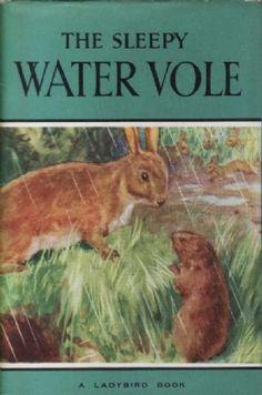 THE SLEEPY WATER VOLE Vintage Ladybird Book Series 497 £24.95