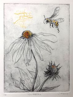 apis mellifera- the honey bee. drypoint etching, screen print and ink Wonder I could do similar effect in collagraph? Intaglio Printmaking, Collagraph, Books Art, Drypoint Etching, Etching Prints, Painting & Drawing, Bee Drawing, Encaustic Painting, Abstract Paintings