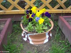 Old painted wheel rim used as a planter