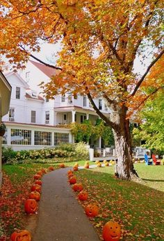 Reminds me of houses in Vermont in fall. Just wait to see how they dress it up spooky at Halloween! Love New England! They celebrate fall, and then Halloween! Halloween Chic, Outdoor Halloween, Farmhouse Halloween, Disney Halloween, Halloween House, Halloween Pumpkins, Happy Halloween, Halloween Party, Beautiful Homes