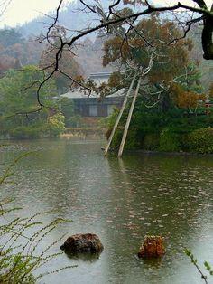 龍安寺:雨の鏡容池