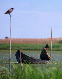 Danube Delta Romania Black Sea Delta Dunarii boat fisherman Danube Delta, Visit Romania, Continental Europe, Danube River, Forest River, Black Sea, Black Forest, Lighthouses, The Locals