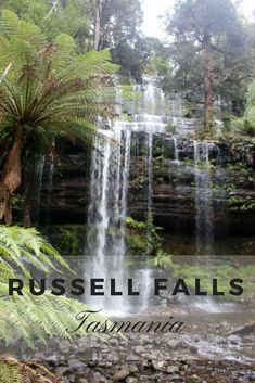 Russell Falls is arguably Tasmania's most breathtaking waterfall and is certainly the most photographed one.This is a full guide to visiting Russell Falls. Tasmania Road Trip, Travel Around The World, Around The Worlds, Travel Guides, Travel Tips, Travel Advise, Australia Travel, Queensland Australia, Western Australia