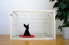 極小パピーさん用の【お急ぎセット】リリースしました。 6MワイドCTケージ  forタイニーパピー アンティークホワイト - 犬猫用ケージ ゲート extail エクステイル Pets, Products, Gadget, Animals And Pets