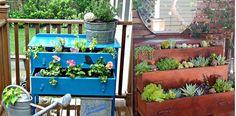 plant-dresser