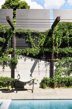 Big Garden Elwood House by Matyas Architects casalibrary.Big Garden Elwood House by Matyas Architects casalibrary Landscape Lighting, Outdoor Lighting, Outdoor Decor, Lighting Ideas, Front Garden Landscape, Landscape Design, Garden Paths, Porches, Garden Architecture