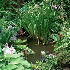 Garden pond feature | Garden design | Landscape ideas | housetohome.co.uk