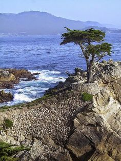 Carmel,  California