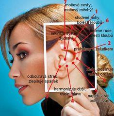 Foot Reflexology, Dieta Detox, Holistic Medicine, Healthy Lifestyle Tips, Health Advice, Health And Safety, Good Advice, Health And Beauty, Health Fitness