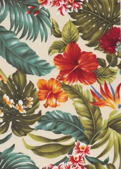 20moha Birds - Bird of Paradise, hibiscus, ginger with orchid flowers, cotton vintage Hawaiian apparel fabric.Add Discount code: (Pin10) in comment box at check out for 10% off sub total at BarkclothHawaii.com