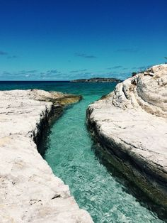 Explore our internet site for more info on Cruise Vacation Norwegian Pearl. It is actually an excellent spot to learn more. Norwegian Sky, Norwegian Pearl, Norwegian Cruise Line, Bahamas Vacation, Bahamas Cruise, Caribbean Cruise, Cruise Travel, Cruise Vacation, Vacations