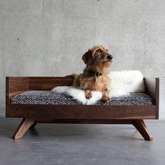 Happy Sunday! #Sunday #petbed #dogbed #dog #doglover #cute #love #doglover #dogstagram #dogobsessed #dogoftheday #dogloversite #dogsofinstagram #doglover #petpics #petparent #petstagram #design #interiordesign #toronto #kingwest #libertyvillage #dachshund #minituredachshund #doxin #dogsareagirlsbestfriend #love #cute #puppy #pupandkit #instagood #instagramdogs