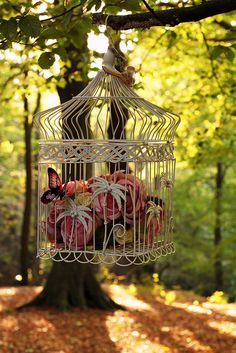 Idea for the purple bird cage From our wedding. Maybe with lights in it instead of flowers? Vintage Props, Vintage Birds, Magic Garden, Garden Art, Purple Bird, Bird Cages, Better Homes And Gardens, Bird Feathers, Beautiful Birds