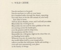 """""""Whoever you are, no matter how lonely, the world offers itself to your imagination, calls to you like the wild geese, harsh and exciting -over and over announcing your place in the family of things"""" -Mary Oliver"""