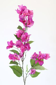 Looking for hard to find flowers and artificial stems? Afloral has the largest selection of faux flower stems online. Shop Afloral for great deals on all your floral decorating needs. Purple Wedding Flowers, Fake Flowers, Summer Flowers, Flowers In Hair, Artificial Flowers, Silk Flowers, Red Violet Hair, Bright Red Hair, Burgundy Hair