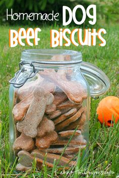 Homemade Dog Beef Biscuits
