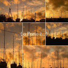 o Porto é... cores da liberdade