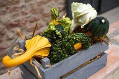 Weekend dans le Beaujolais : 8 expériences à ne pas louper ! - Chouette World - Blog voyage Le Beaujolais, Blog Voyage, Ethnic Recipes, Food, Owls, Greedy People, Essen, Meals, Yemek