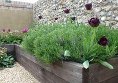 Helen Riches | Garden Design And Writing | Portfolio