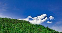 Blue Cloud Green / June