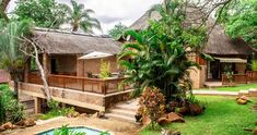 Woodlands Guesthouse Wooden Walkways, Water Tube, Forest Floor, Comfy Bed, Private Room, Lounge Areas, Bedroom Themes, Tropical Garden, Great Places